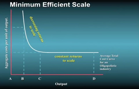 Minimum Efficient Scale to Optimize Output